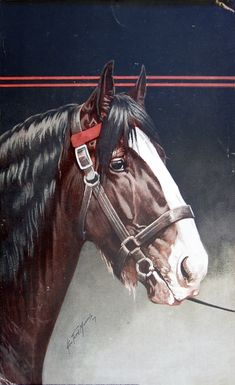 CLYDESDALE by George Ford Morris