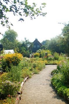 A sunny cutting garden on the German Countryside. | Image via: Frolic!