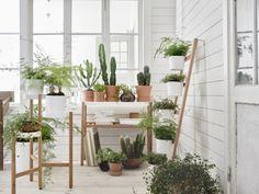 Aufstocken für die Winterzeit mit Ideen von Inter IKEA Systems B.V. - Pflanzenfreude.de