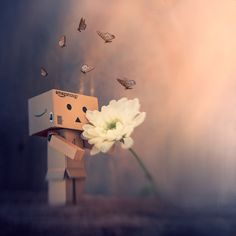 https://flic.kr/p/24uSDXj | Danbo waiting for spring | Lensbaby Composer Pro Double glass optic