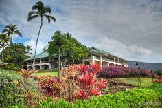 Why Lanai Island Should be your Next Destination! | Hawaiian Explorer