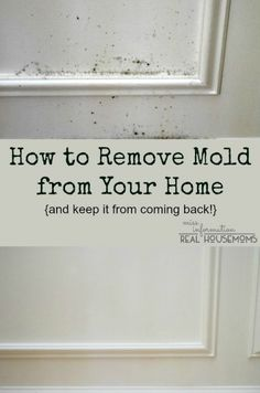 Remove Mold from Your Home and Keep it from Coming Back | Real Housemoms For the condo