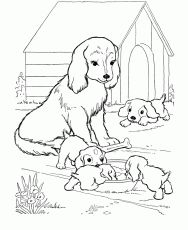 Dog Coloring Pages Coloring Pages Coloring Pages Dog Coloring
