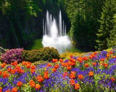 Buchart garden @Victoria Iland Vacouver BC Canada