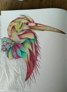 Millie marotta tropical world coloring book. Love it. The pages are super fun to color and really detailed designs.