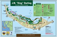 A trip to Sanibel wouldn't be complete without a visit to the J.N. Ding Darling National Wildlife Refuge