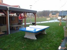Pingpongtafel Afgerond Blauw bij ASVZ in Udenhout