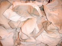 Homemade Mamas: Dirty Little Secrets - How To Get Your Dirty Whites Clean Again!