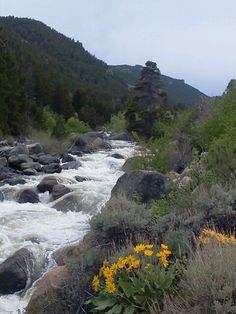 Sinks Canyon, Lander, Wyoming