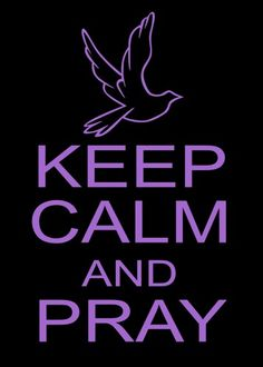 Keep Calm and Pray with Peace Dove Vinyl Decal Sticker
