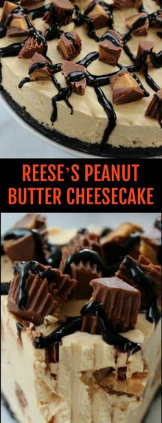 You will find this No Bake Reese's Peanut Butter Cheesecake loaded with smooth and creamy peanut butter plus yummy Reese's Peanut Butter Cups Reese's Peanut Butter Cheesecake, Chocolate Raspberry Cheesecake, Pumpkin Pie Cheesecake, Easy Cheesecake Recipes, Reeses Peanut Butter, Cheesecake Desserts, Dessert Recipes, Winter Desserts, Great Desserts