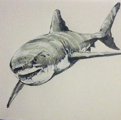 The great white shark! Quick sketch