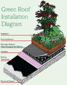 Green roof installation diagram. This would be great for the top of a chicken coop or a greenhouse/shed.