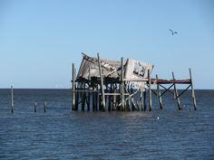 House on the Bay ~ Cedar Key