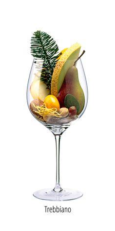 Wine Facts, Wine Chart, Wine Varietals, Wine Folly, Champagne, Port Wine, Wine Cheese, In Vino Veritas, Cata