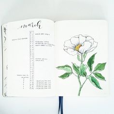 "2,671 Likes, 47 Comments - liz (@bonjournal_) on Instagram: ""#March dates in the classic #bulletjournal style with a twist: the left is for personal dates and…"""
