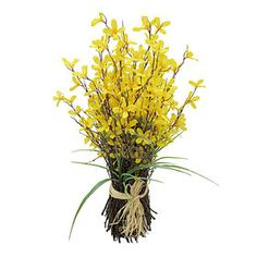 $12.49 At Home Picture of 29-in. Forsythia Bundle