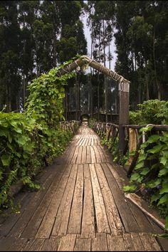 Ruhengeri, Rwanda, Africa