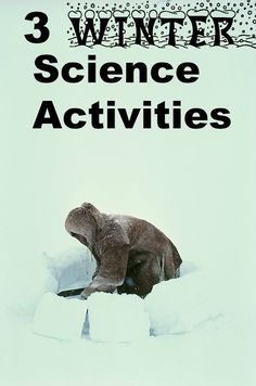 Do these fun winter science projects with the kids. GrandmaIdeas.com