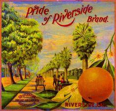 Hemet Riverside County Lake Hemet #1 Orange Citrus Fruit Crate Label Art Print