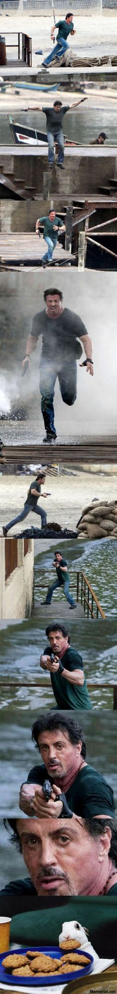 Saving The Day. Sylvester Stallone, the rabbit and cookies. Little Fun - all about humor and fun! Funny Images, Funny Photos, Funniest Pictures, Silvester Stallone, Rambo, Picture Blog, Humor Grafico, I Need To Know, Human Body