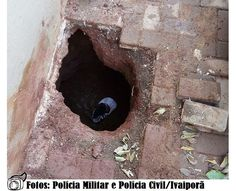BLOG DE NOTÍCIAS DE MANOEL RIBAS E REGIÃO: Presos fogem da cadeia de Ivaiporã por túnel de 8 ...