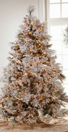 Gold Frosted Christmas Tree~
