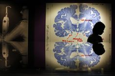We know that being bilingual has cognitive benefits. But now, research suggests that it can fundamentally alter the structure of your brain. Philosophical Questions, Learn Hebrew, Massachusetts Institute Of Technology, Brain Science, World Economic Forum, Research Methods, Kids Health, Brain Health, Down Syndrome