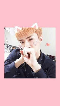 Look at this little cutie pie. Kitty Sehun is the cutest thing I have ever seen Rapper, Sehun Cute, Kpop, Vixx, Youngjae, Chanyeol, Fangirl, Handsome, Kitty