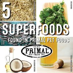 Some foods are luckier than others: they lived off their great reputation (spinach and broccoli for example.) Yet, there are superfoods for pets and humans out there that you would never suspect would...