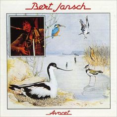 Bert Jansch - Avocet