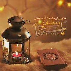 Ramadan Dp, Ramadan Poster, Ramadan Cards, Ramadan Images, Muslim Ramadan, Eid Cards, Ramadan Gifts, Wallpaper Ramadhan, Ramadan Mubarak Wallpapers