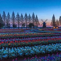 【RETRIP×あけぼの山農業公園】 千葉県柏市にある「あけぼの山農業公園」は、言わずと知れたチューリップの名所。約16万本もある色とりどりのチューリップが一斉に咲き誇る様子はまさに絵画のよう。見頃の今を逃さぬよう、ぜひ訪れてみてくださいね。 このお写真は @tetsuyasato11100825 さんにお借りしました。素敵なお写真をありがとうございます! #RETRIP #リトリップ国内 #リトリップ #日本 #千葉 #柏 #あけぼの山農業公園 #チューリップ #花畑 #春 #おでかけ #旅 #japan #chiba #kashiwa #spring #beautiful #akebonoyama #tulip #tulips #travel #beautiful #retrip_千葉 #retrip_kn . 【RETRIPで絶景検索!】 RETRIPでは各地の素敵な絶景のお写真をお待ちしております。#retrip_〇〇…
