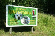 Heinolassa kahdeksan eri lintutaloa ja Harjulampi muodostavat kokonaisuuden, jonka veroista lintuparatiisia saa Suomesta hakea.
