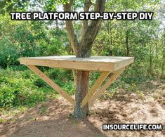 Tree House Deck, Garden Tree House, Tree Deck, Tree House Plans, Garden Trees, Building For Kids, Building A Deck, Backyard Trees, Backyard Landscaping