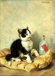 Pobre gatito - Julius Adams.