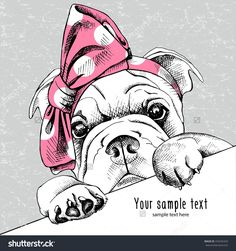 The Image Portrait Of A Dog Shar Pei In The Headband. Vector Illustration. - 376435423 : Shutterstock