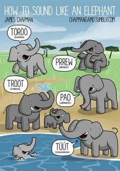 How To Sound Like An Elephant