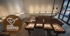 Prof. Arno Lise, curador das coleções de Aracnídeos do Museu, discorre os fatos importantes sobre seu processo de criação e sua trajetória no Museu e nas coleções, em um vídeo interativo que completa a exposição Ilustração Científica: a arte na descrição de novas espécies.