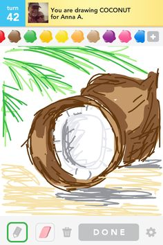 Coconut Drawsome