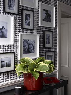 black & white photos, white frames & a pop of red..well done