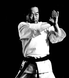 Sokumen awase uke Kyokushin Karate, Shotokan Karate, Karate Kata, Pose, Muscular, Wing Chun, Kung Fu, Martial Arts, Exercise
