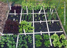 Potager Garden, Herb Garden, Vegetable Garden, Garden Plants, Edible Garden, Easy Garden, Square Foot Gardening, Green Garden, Organic Farming