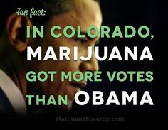 barack obama colorado marijuana majority