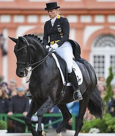 Isabell Werth engages Weihegold for the sixth time for gold Photo: picture alliance / dpa
