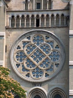 Роза Лозанский собор