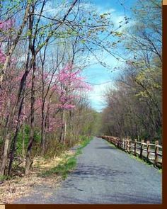 Rails to Trails of Central Pennsylvania - Featuring the Lower Trail
