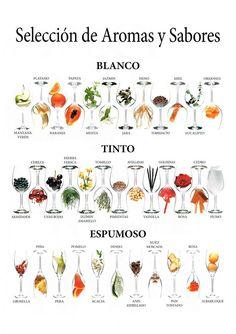 Selección de Aromas y Sabores #infographic #infografía