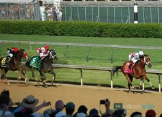 Big Brown winning his Kentucky Derby and Eight Bells the filly behind him in 2008