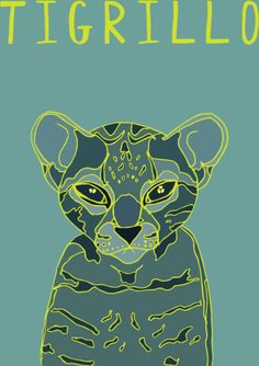 My Illustration Blog AnimalesDelMundo AnimalesDelMundoEcuador Ecuador animales animals illustration ilustración Tigrillo Cat
